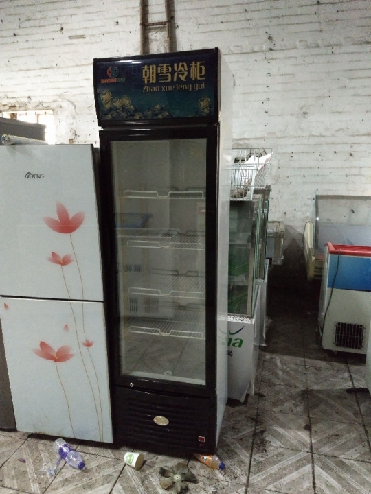 东莞大量各类型冰箱冰柜展示冷柜出租