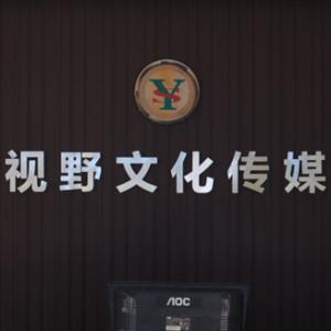 安阳视野文化传媒有限公司