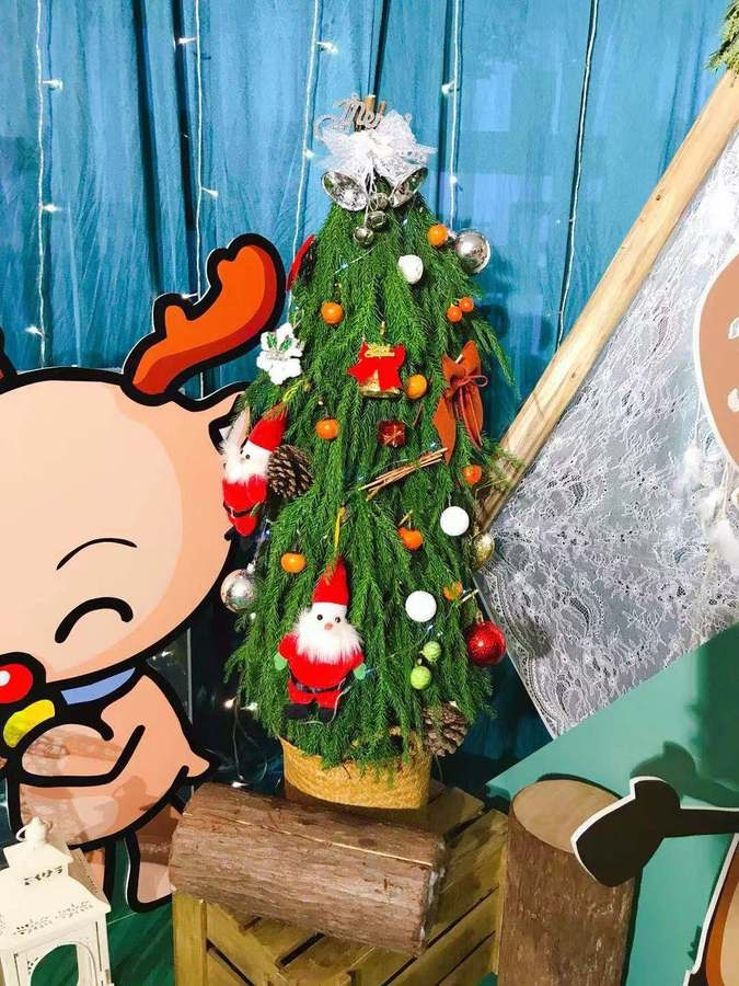深圳圣诞趴之花花世界